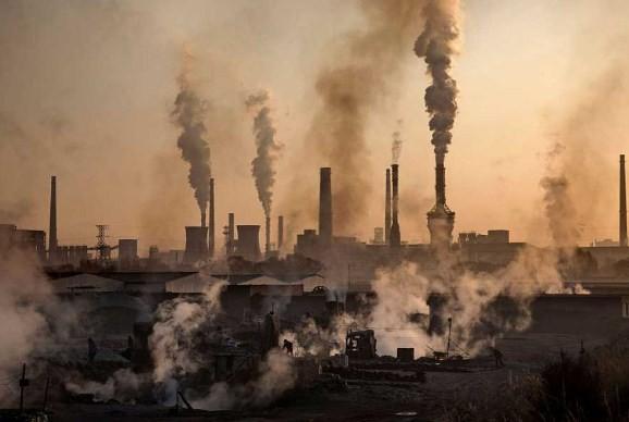Продукты защищающие от загрязненного воздуха.