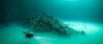 Подводеный мир.